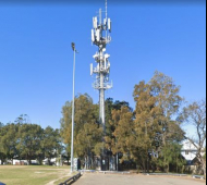 Curly locals fight telco