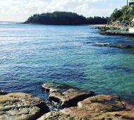 Decline in local sea life