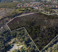 Council appeal to State to prevent local land clearing