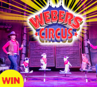 WIN: One of THREE Family Passes to Webers Circus!