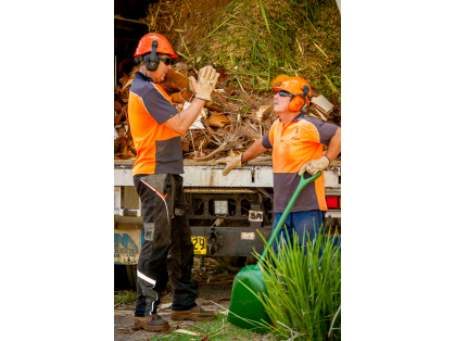 Tree Pruning -Tree Thinning -Tree Removal -Tree Lopping -Tree Transplanting -Stump Grinding & Emergency Tree Assistance