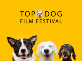 2021 Top Dog Film Festival
