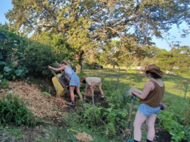 Intro to Permaculture Course
