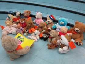 Teddy Bears' Sleepover at Manly Library