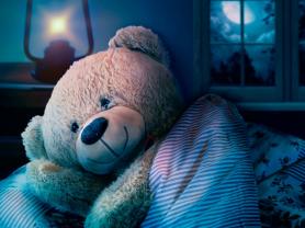 Teddy Bears' Sleepover at Warringah Mall Library