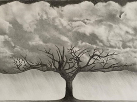 Mike Simon: Clouds of Life Exhibit