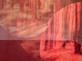 Art Exhibition: Beyond Matter