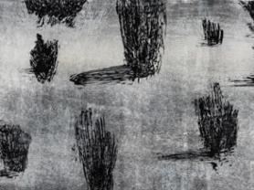 Terrestrial Symphony Printmaking Exhibit