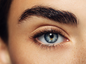 Eyebrow Wax & Tint & Lash Tint $45, Think Local Deal, Aki's Spa Eyelash and Beauty