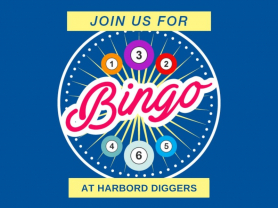 Weekly Bingo at Harbord Diggers