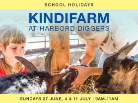 KindiFarm Activity at Harbord Diggers