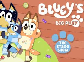 Bluey'S Big Play Theatre