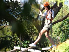 Wild Ropes Adventure at Taronga