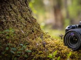 Photography Beginners Workshop