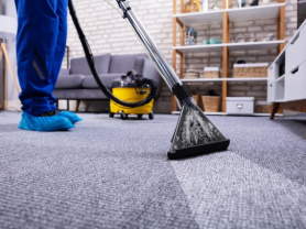 Professional Carpet Cleaning Only $255!