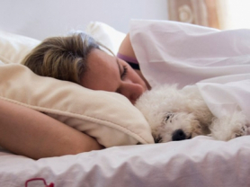 38% Off Doona or Blanket Cleaning: $25, Think Local Deal, Vinny Dry Cleaners