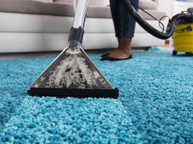 Deep Carpet Cleaning with Sparkclean!