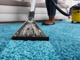 Professional Carpet Cleaning just $255