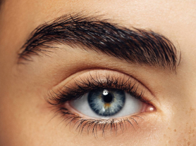 Eye Pack: Brow Wax, Tint & Lash Tint $52, Think Local Deal, La Mona Beauty