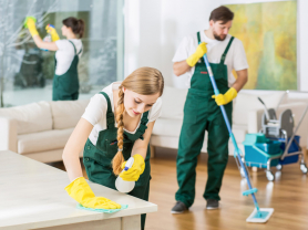 Deep Clean: 2 Cleaners for 4 Hours $441, Think Local Deal, Sparkclean